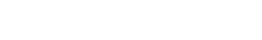 Canadian International Immigration Consultants